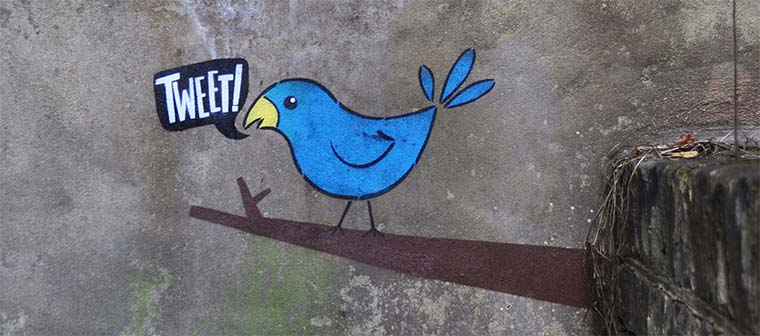 tweetbirdonthewall