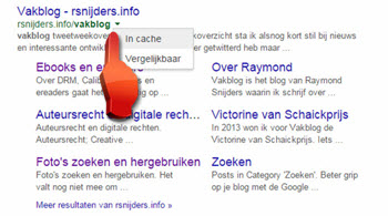 google cache in search